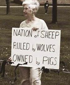 130401.sheep.225